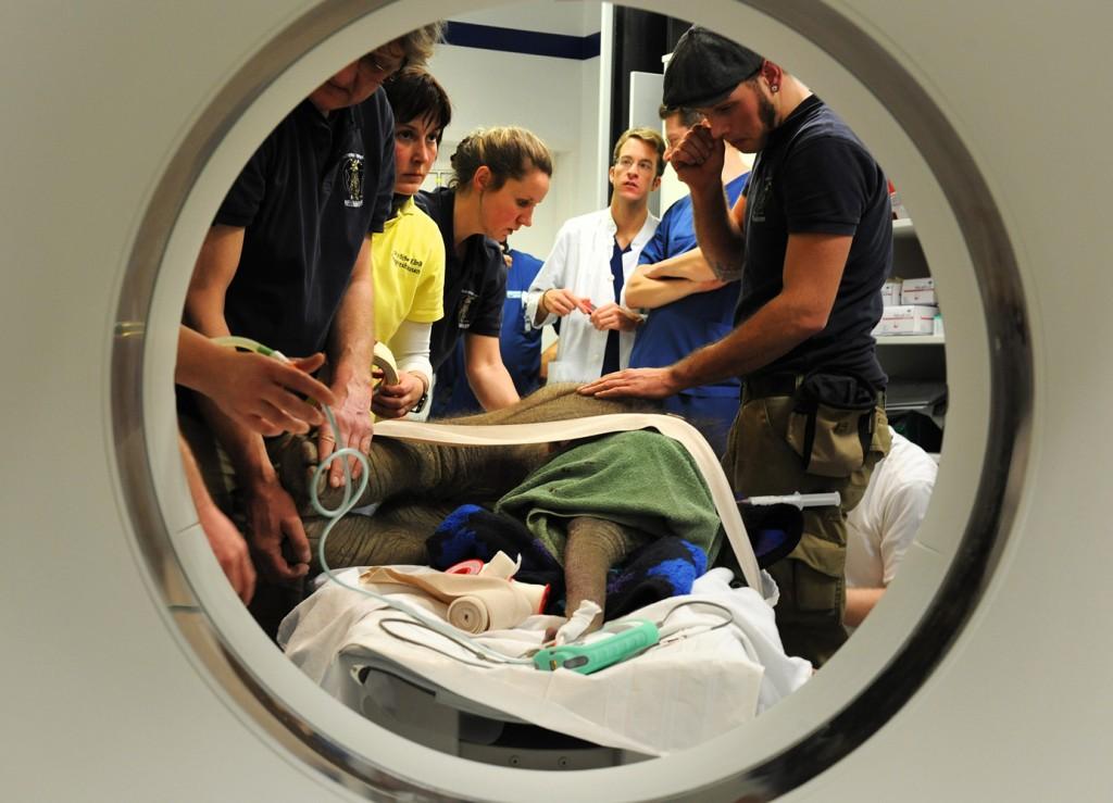 Foto: Klinikum der Universität München (LMU)