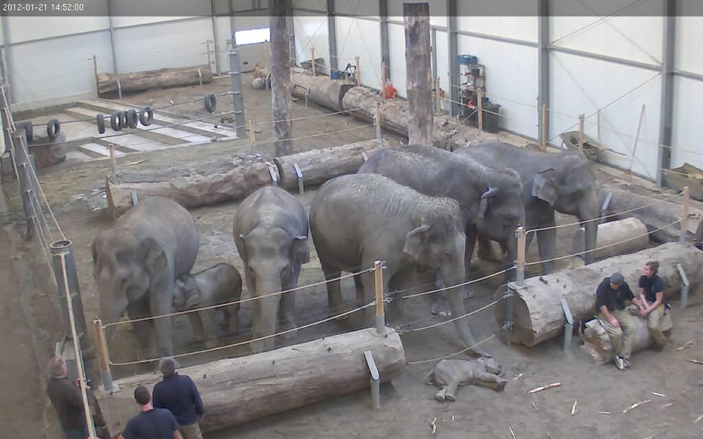 Foto: Münchener Tierpark Hellabrunn AG